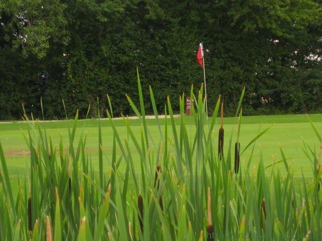 golfperche2.jpg