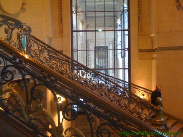 Helmut-Newton-Grand-Palais-3